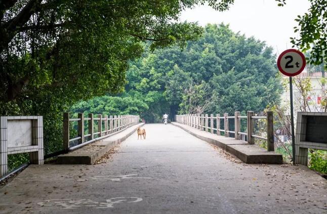 贤鲁岛13.8公里,藏了里水最棒的徒步线路!-旅游资讯